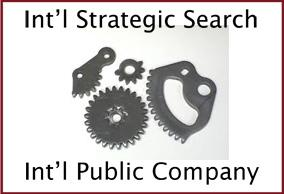 international strategic search